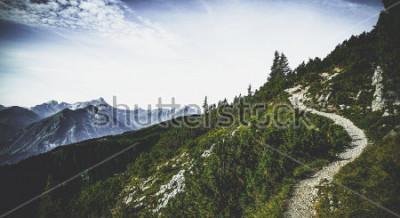 Poster Wanderweg durch bewaldete Alpengipfel im Sommersonnenschein mit Blick auf ferne Gipfel und Gebirgszüge in einer landschaftlich reizvollen österreichischen Landschaft
