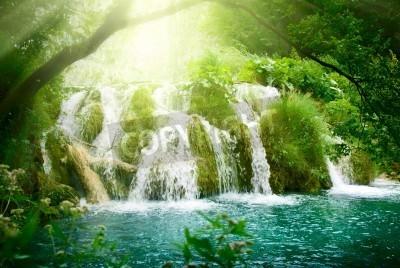 Poster Wasserfall im tiefen Wald