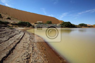 Water in Sossusvlei