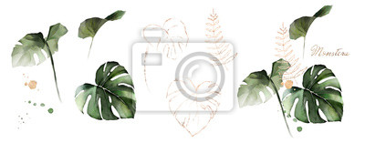 Poster  watercolor and gold leaves monstera. herbal illustration. Botanic tropic composition.  Exotic modern design