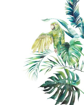Poster Watercolor green parrot frame. Hand drawn greeting card design with exotic leaves and branches isolated on white background. Palm tree, banana leaves, mostera plants