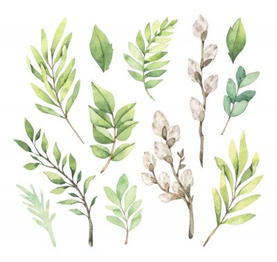 Poster Watercolor illustrations with eucalyptus, green leaves and willow. Easter brunches. Spring greenery design elements. Perfect for cards, invitations, banners, posters.