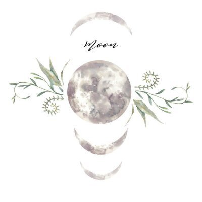 Poster Watercolor moon and plants label. Isolated logo design with plants and lunar silhouette