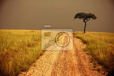 Weg durch die Savanne, einsamer Baum