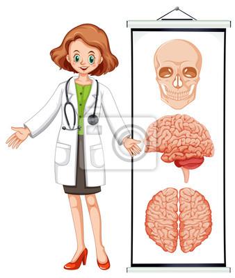Weibliche arzt und brian diagramm wandposter • poster dass, medicals ...