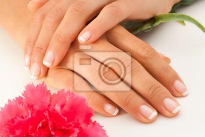 Weibliche Hände mit Französisch Maniküre.