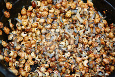 Weinbergschnecken auf einem Markt auf Marrakech