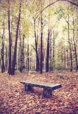 Poster Weinlese-gefilterte Bild der Bank in einem Wald.