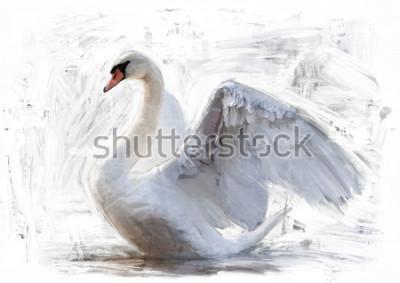 Poster weißer Schwan skizzieren / Ölfarbmalerei