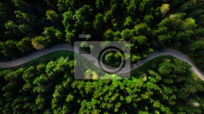 Poster Winding road trough dense pine forest. Aerial drone view, top down
