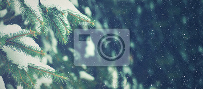 Poster Winter Season Evergreen Christmas Tree Pine Branches With Snow and Falling Snowflakes, Horizontal
