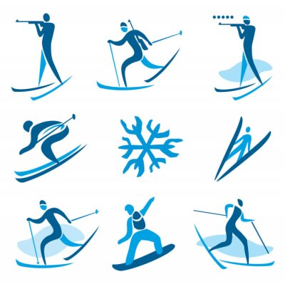 Poster Wintersport-Symbole