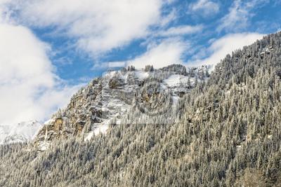 Winterwald in den Bergen