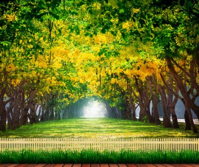 Poster wood terrace with fresh and green beautiful of summer blooming y