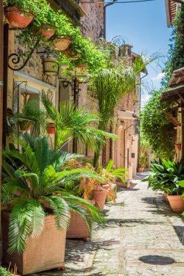 Poster Wunderschöne dekorierte Straße in kleinen Stadt in Italien, Umbrien
