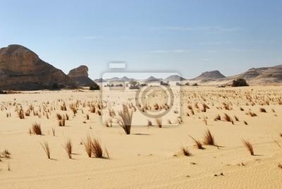 Wüste Sahara, Ägypten