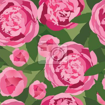 Drucken, бесшовный фон из розовых цветов, пионы