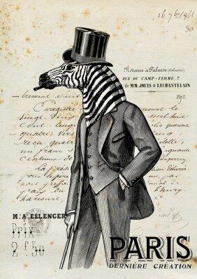 Poster Zebra Mann