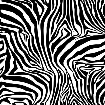 Poster Zebra-Streifen. Hintergrund. Muster. Ein nahtloses Muster.