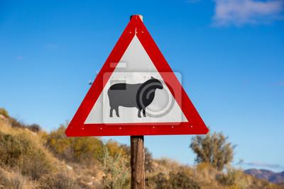 Zeichen Warnung über Schafe auf der Straße im Norden Südafrikas