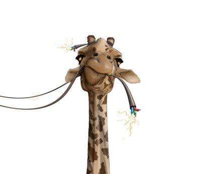 Poster Zeichnung einer Giraffe