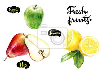 Poster Zitrone Apfel Birne Aquarell