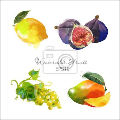 Zitrone, Feigen, Trauben, Mango
