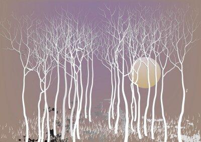 Poster Zusammenfassung Wald Bäume mit verlassen mit dem Mond Nacht Zeit Vision, weißen Baum