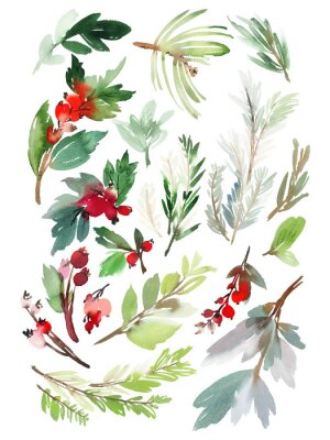 Sticker A set of Christmas floral elements on a white background