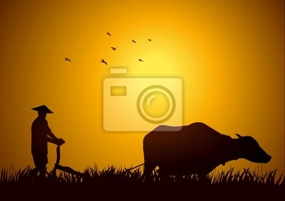 Abbildungbeschreibung eines Bauern pflügen die Felder