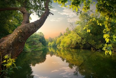 Abend auf dem Fluss