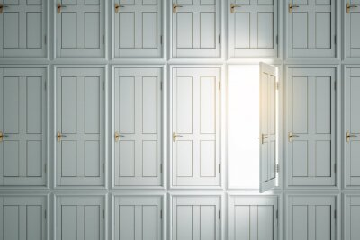 Abstract white doors to success