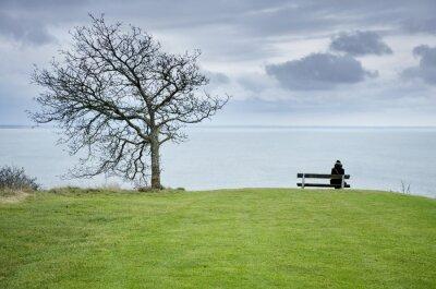 Allein Frau sitzt auf der Bank durch den Baum über dem blauen Meer.