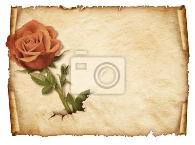 Alte Blatt Papier, Vintage aged alte Papier mit rose