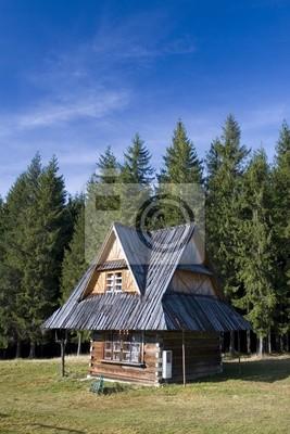 Altes traditionelles Haus in Zakopane