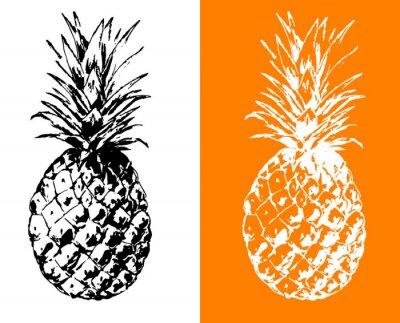 Ananas-Illustration, Vektor Hand gezeichnet, Umriss, stilisiertes Symbol schwarz und weiß
