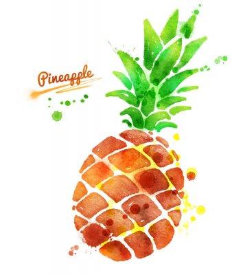 Sticker Ananas mit Farbspritzern.
