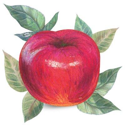 Sticker Apple auf weiß mit Ausschnittspfad