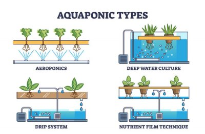 Sticker Aquaponic watering and irrigation model types for plants outline collection. Aeroponics, deep water culture, drip nutrient system technique as ecological gardening water supply vector illustration.
