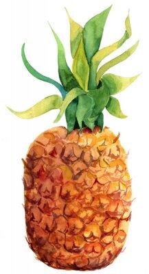 Sticker Aquarell Ananas auf weißem Hintergrund