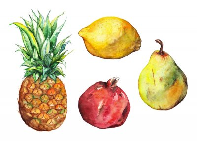Sticker Aquarell Ananas Granatapfel Zitrone Birnen Obst-Set isoliert