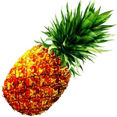 Sticker Aquarell Ananas isoliert