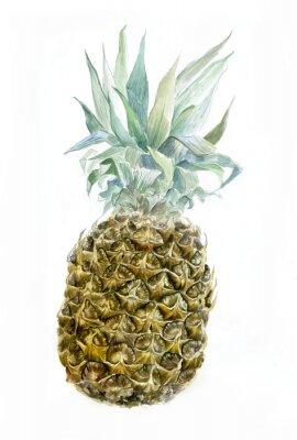 Sticker Aquarell Ananas isoliert auf weiß