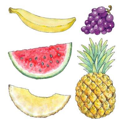 Sticker Aquarell Bild von verschiedenen Früchten