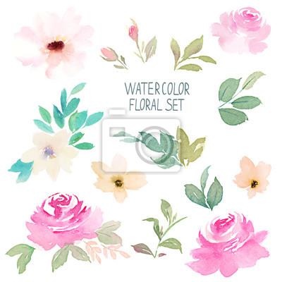 Aquarell Blumen-Set. Hand gezeichnet Illustration