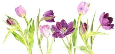 Sticker Aquarell lila und rosa Tulpen