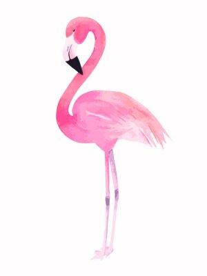 Sticker Aquarell rosa Flamingo. Vektor-Illustration