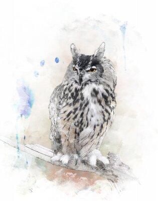 Sticker Aquarellbild Owl