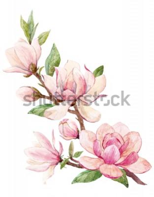 Sticker Aquarellillustration einer Niederlassung mit rosa Magnolienblumen-Frühlingskarte der Blumen