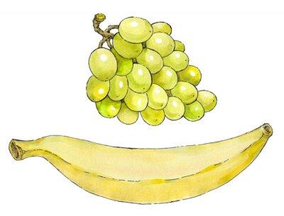 Sticker Aquarellmalerei einer Reihe von Obst: Trauben und Bananen